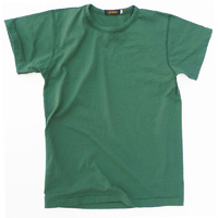 SKIVY T-SHIRT GREEN